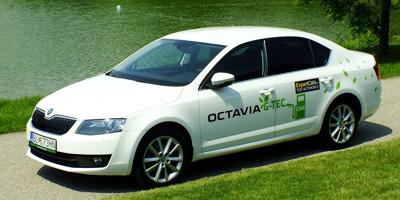 Škoda Octavia 1.4 G-TEC CNG | Autopůjčovna Agile
